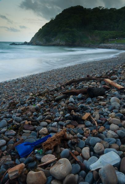 Rubbish at Caswell Bay