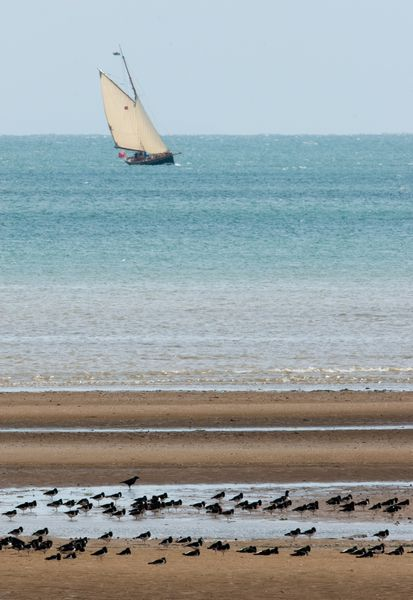 Bank holiday in Swansea Bay
