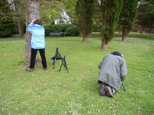 Course participants, Clyne Gardens, Swansea