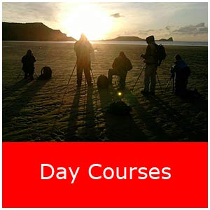 reddaycourseimage