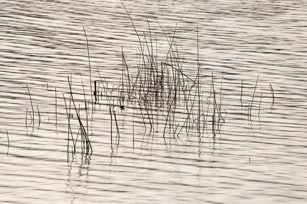 Oxwich Bay20130325_DSC2013
