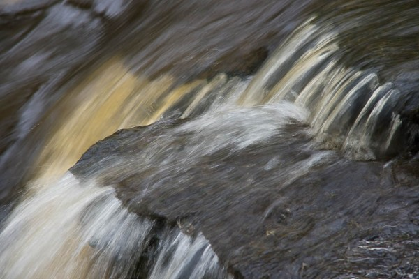 Elizabeth & Rowe Harding Nature Reserve20140406_DSC6495