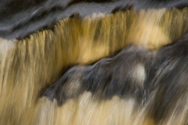 Elizabeth & Rowe Harding Nature Reserve20140406_DSC6548
